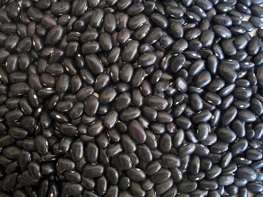 Schwarze Bohnen Black Beans
